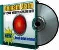 Thumbnail 2010 Domain Alarm